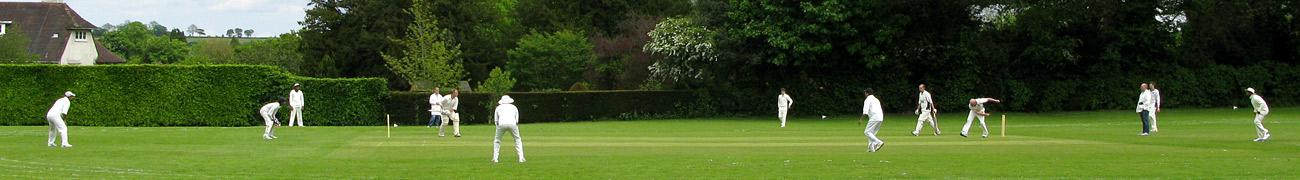 cricket02