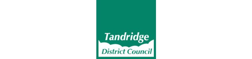 Tandridge District Council Logo